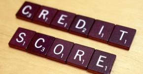 kreditnaya istoriya vajnost